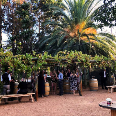 rustique-swan-valley-venue-maestro-wedding-function