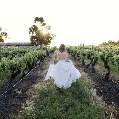 A Stunning Bride Walking Through A Winery