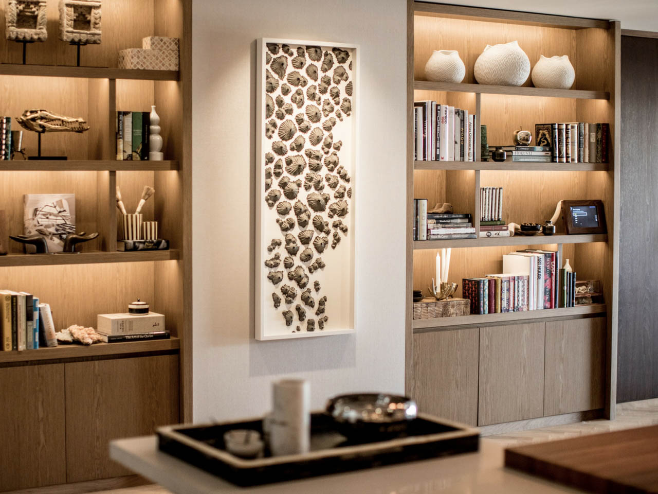 Lovely Brown Bookshelves With Framed Shell Sculpture On Wall.