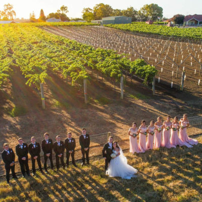 A stunning overhead photo of a wedding couple and bridesmaids dressed in pink on right and bride grooms dressed in suits on left at the front of a vineyard at sunset