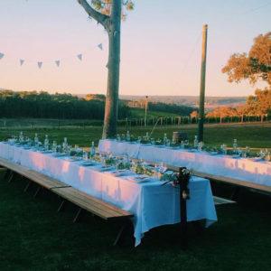 2 Long Tables Setup Under A Tree.