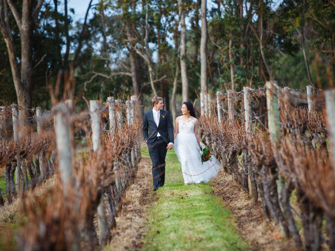 Bride and Groom Walking Through Vines On Their Wedding Day