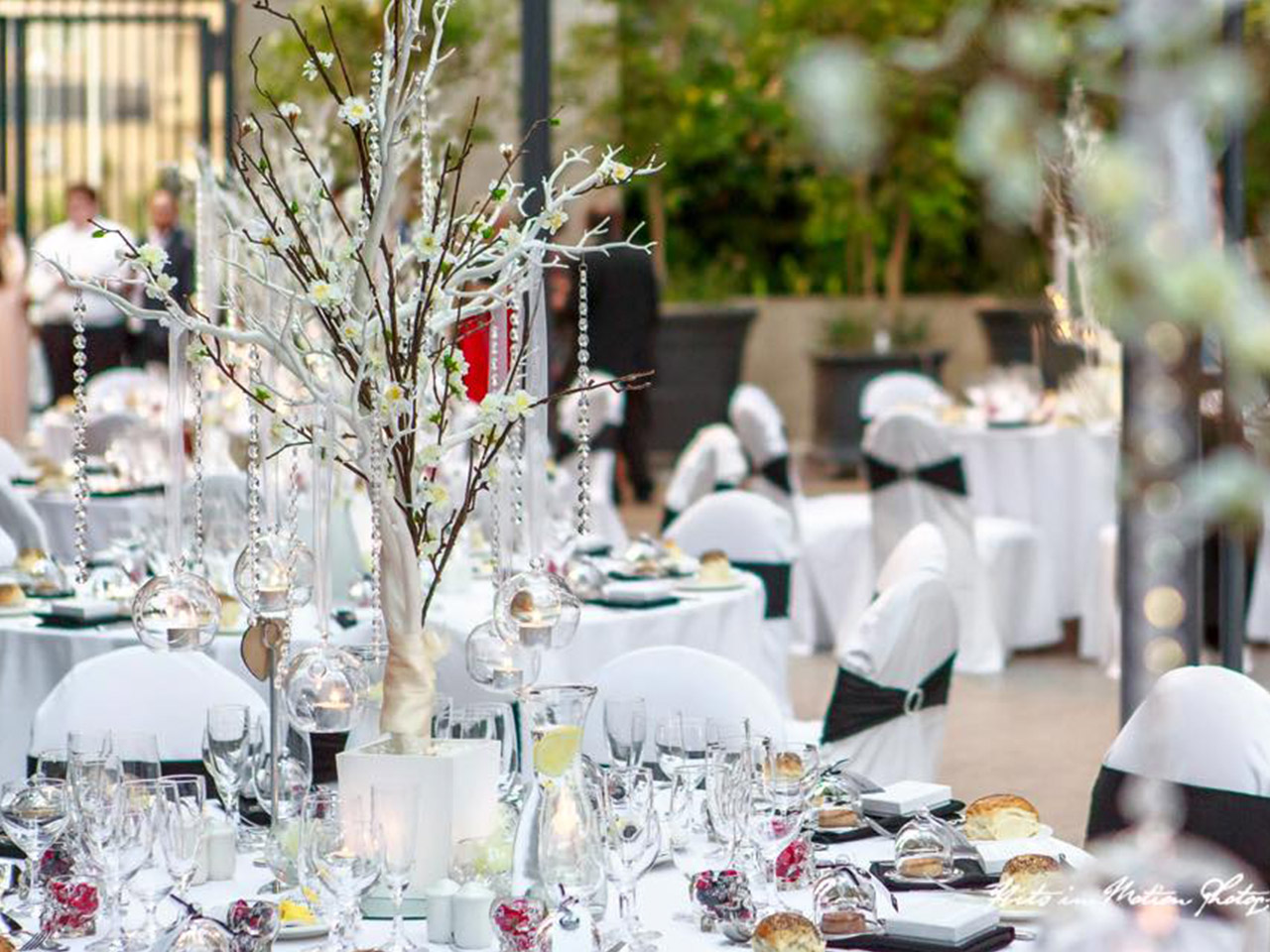 Tables and Chairs in Banquet Style with Foods, Plates, Glass and Flower Centerpieces