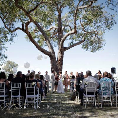 Ongoing Wedding Ceremony Under A Tree In Mandurah Quay Resort