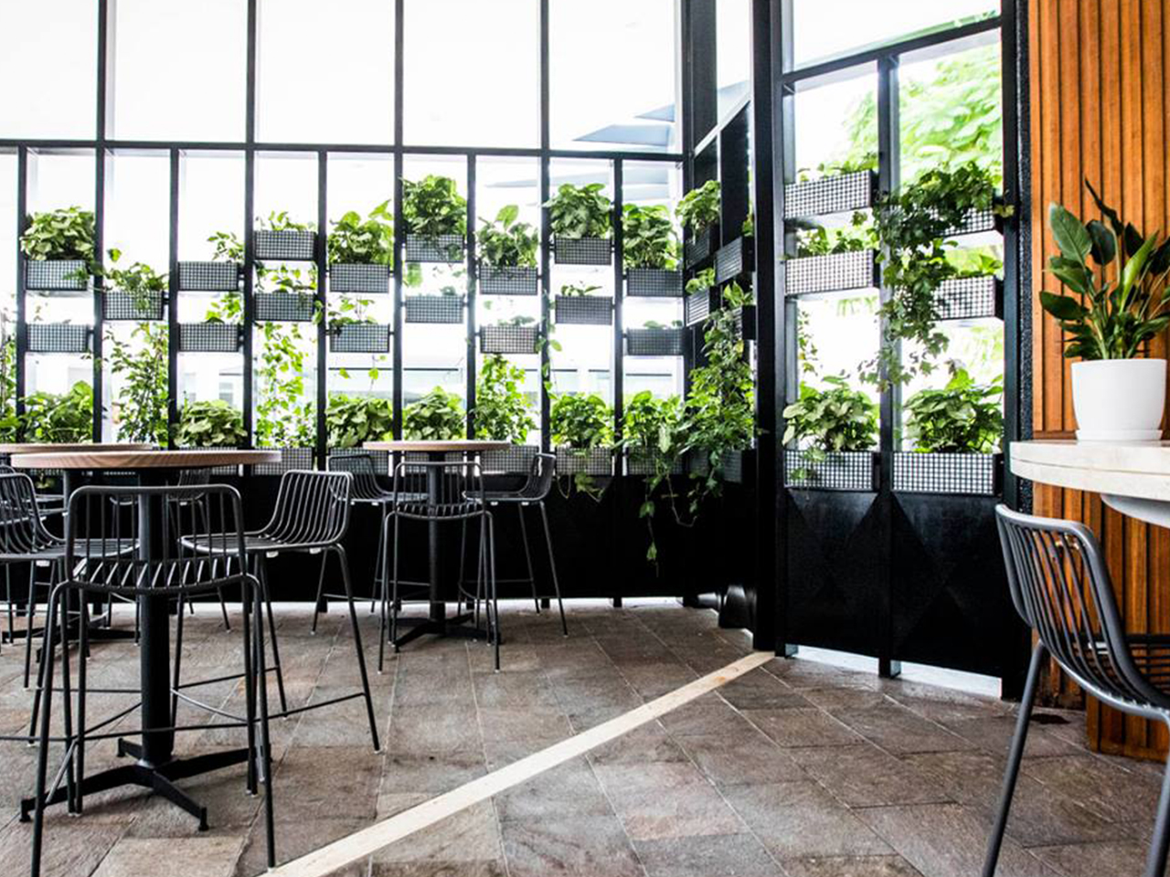 High Chairs And Tables Inside The Unique Venue With Indoor Plants