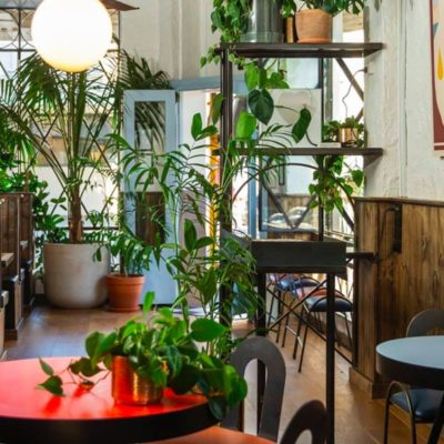 Plant populated lounge artea with round tables and shelves