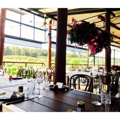 Balcony view of vineyard