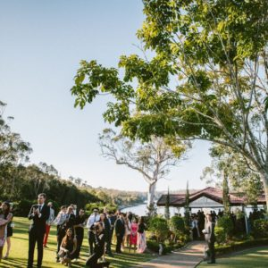 Wedding guests on the lawn
